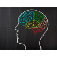 ValAsta/Astaxanthin and Neuroprotective Activity