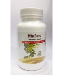 Mito Boost - Dr Dib - Kirkman
