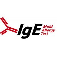 Mold IgE Allergy Test