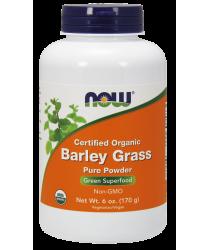 Barley Grass Pure Powder, Organic