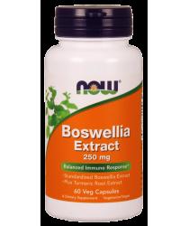 Boswellia Extract 250 mg 120 Veg Capsules