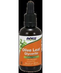 Olive Leaf Glycerite 18% - Vegetarian - 2 oz