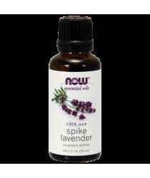 Spike Lavender Oil 1 oz.