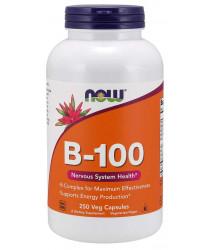 Vitamin B-100 250 Capsules
