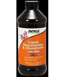 Glucosamine & Chondroitin with MSM Liquid 16 fl. oz