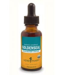 GoldenSeal Extract Liquid